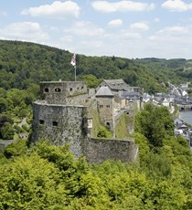 "Castle of Bouillon with its ""Ballet of the birds of prey"""