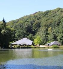 Provinz-Domäne Bois des Rêves
