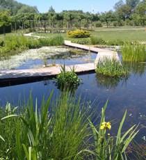 Die Gärten des Sees von Bambois