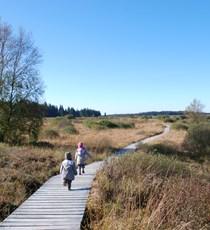 Hautes Fagnes Nature Reserve Centre - Botrange